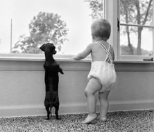 Baby and dog photo